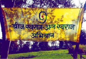 Basant Panchami - Celebration of Mustard and the coming of Spring |