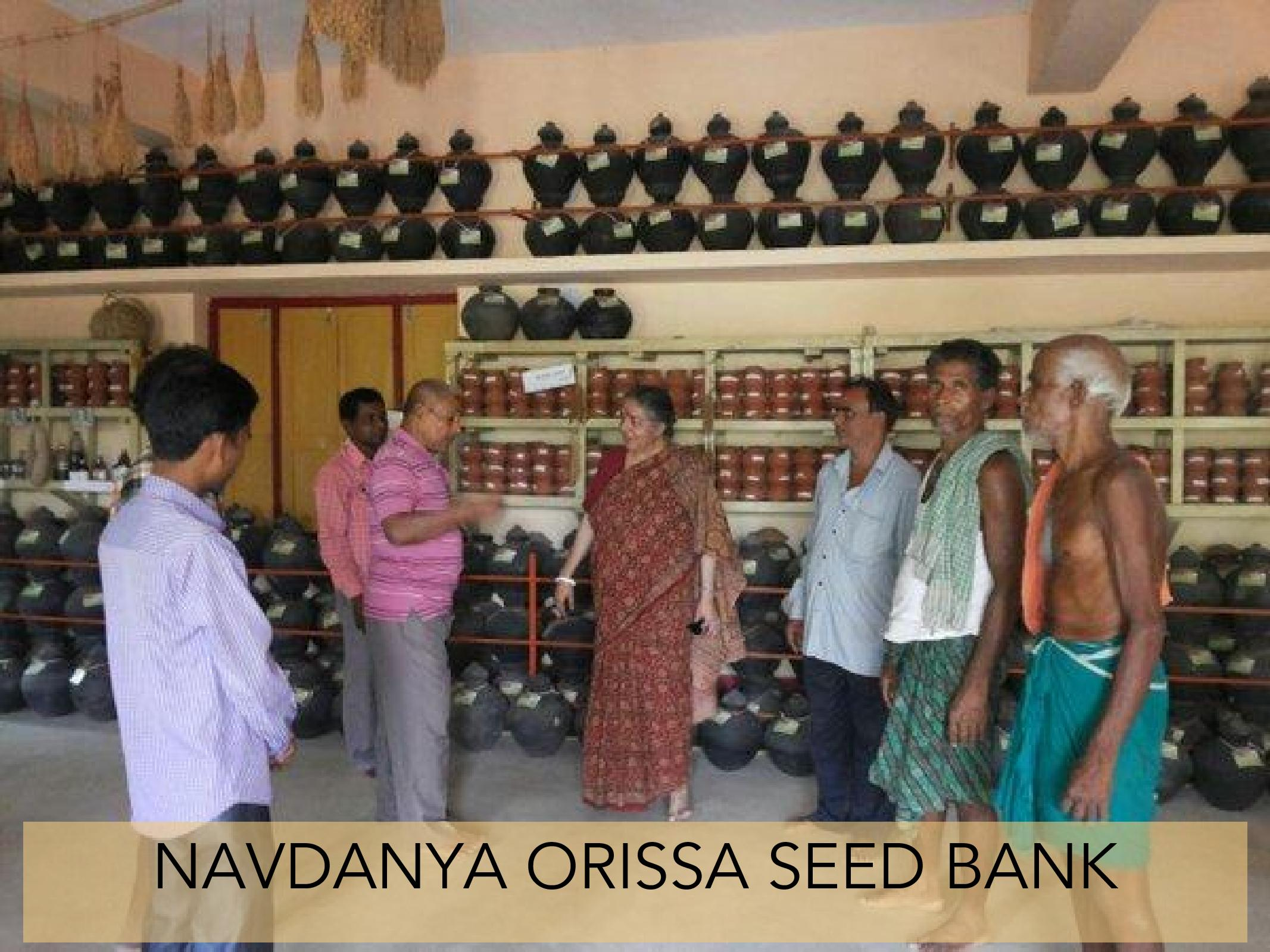 Navdanya Community Seed Banks – Navdanya international